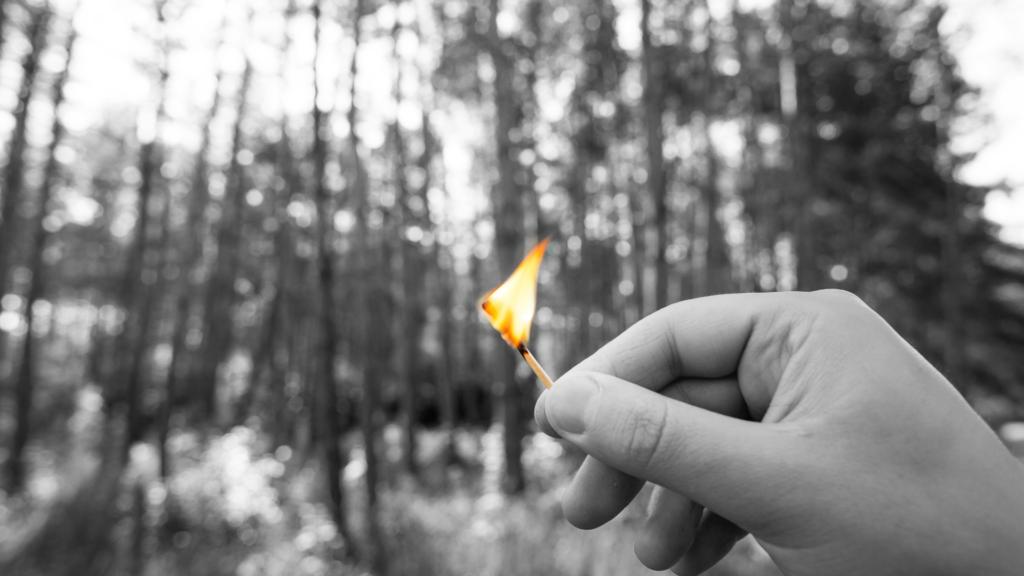 Mano con fiammifero acceso e nello sfondo un bosco.